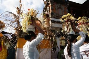 Bali fest