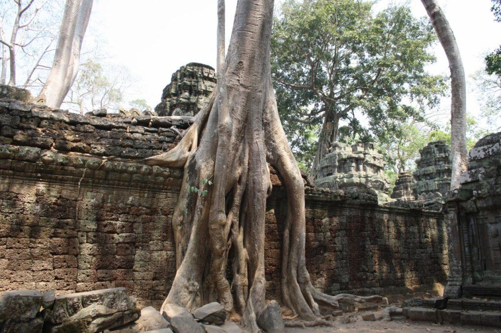 Templul Ta Phrom