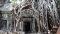 cambogia o culisa de film