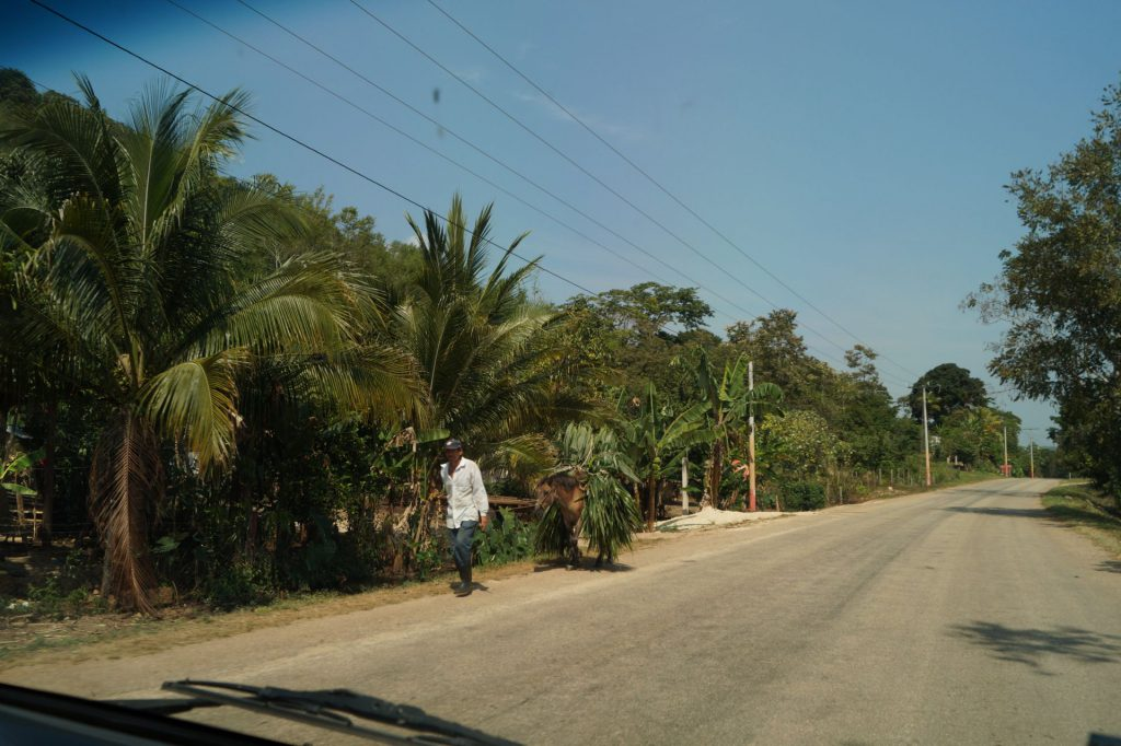guatemala strada