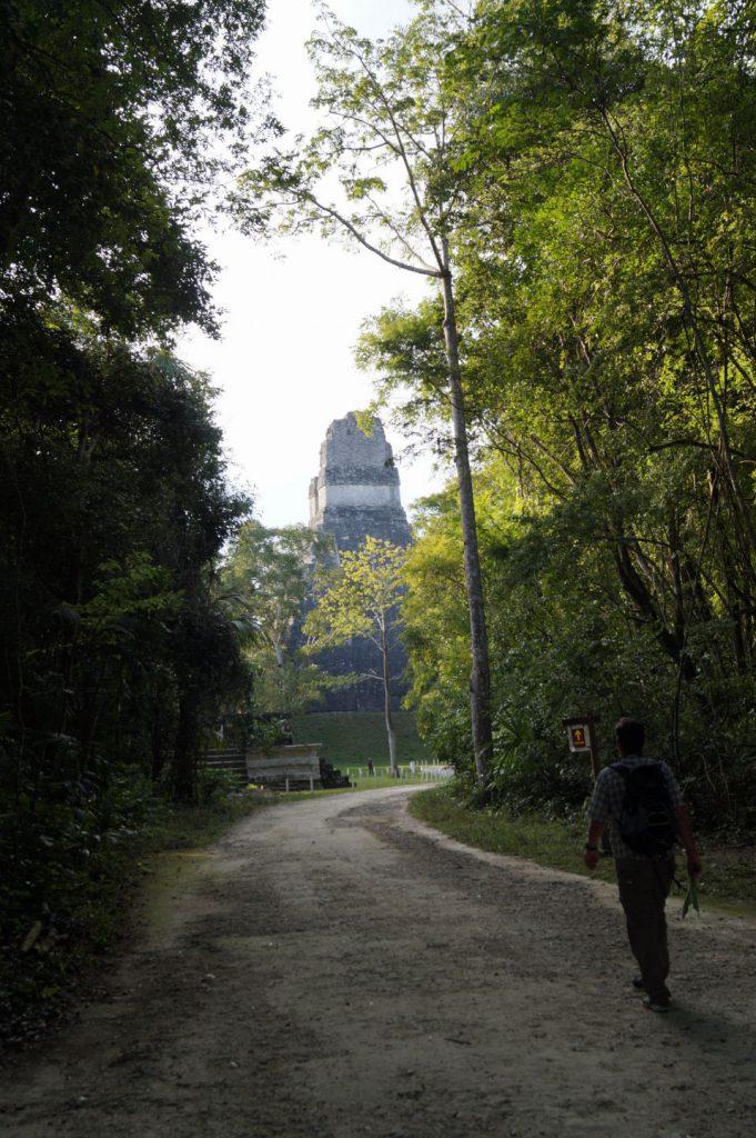 In drum spre marea piramida din Tikal