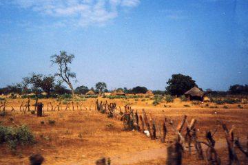In Gambia nu prea ai ce vedea